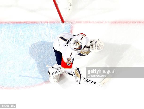 Roberto Luongo of the Florida Panthers crouches near the crease to protect the net during an NHL game against the Carolina Hurricanes on November 7...