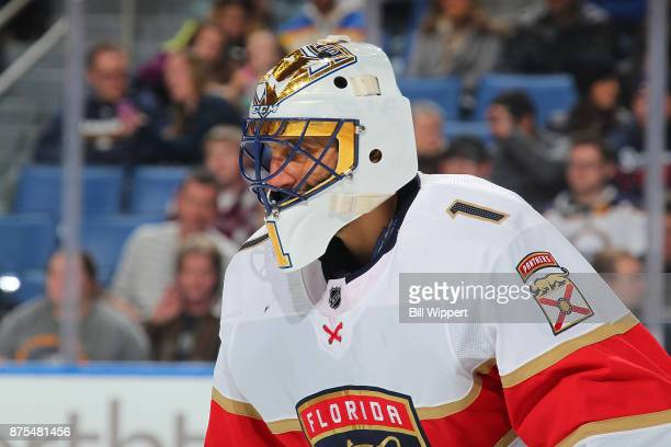 Roberto Luongo of the Florida Panthers tends goal against the Buffalo Sabres during an NHL game on November 10 2017 at KeyBank Center in Buffalo New...