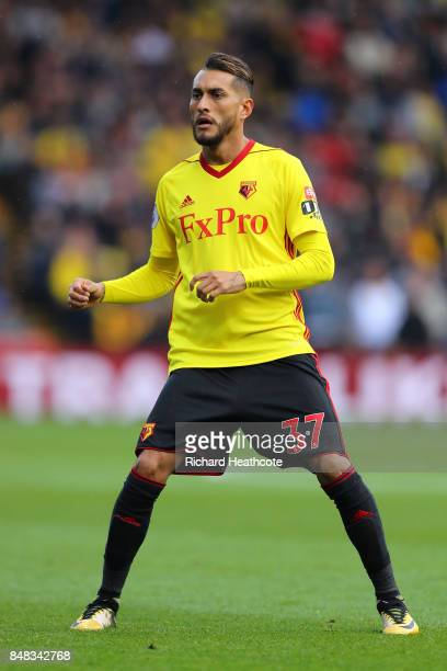 Roberto Pereyra of Watford in action during the Premier League match between Watford and Manchester City at Vicarage Road on September 16 2017 in...