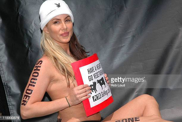 Robin Arcuri during Playboy Playmate Robin Arcuri Protests Nude Against Eating Meat at Union Square in New York New York United States