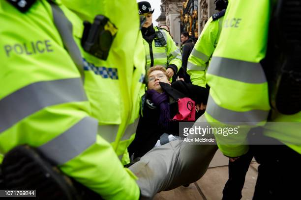 Robin BoardmanPattison is carried by a police officers as he is arrested during a climate change protest outside Buckingham Palace on November 24...