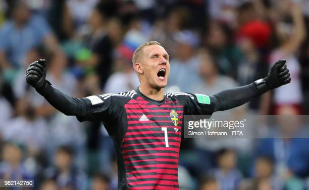 Robin Olsen of Sweden celebrates his team's first goal during the 2018 FIFA World Cup Russia group F match between Germany and Sweden at Fisht...