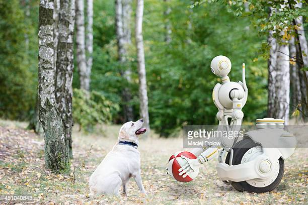 Robot and dog in the park