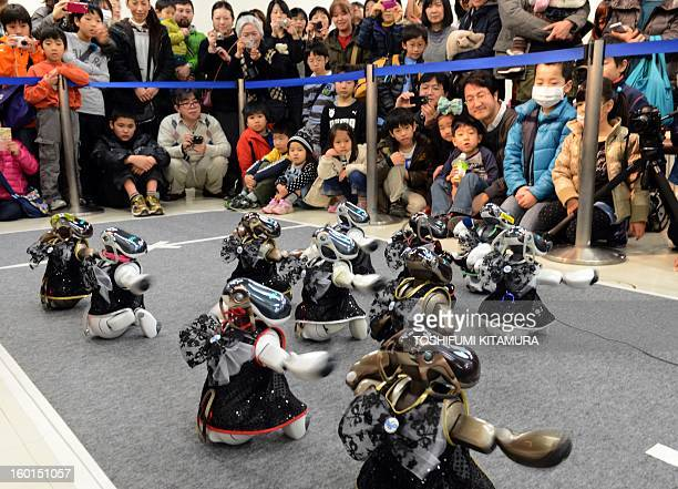 Robot dogs 'Aibo' peform in the dancing contest during the Robot Athlete Cup competiton in Yokohama on January 27 2013 The robots compete in six...