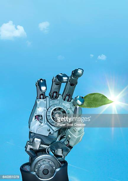 Robot hand holding a single green tea leaf