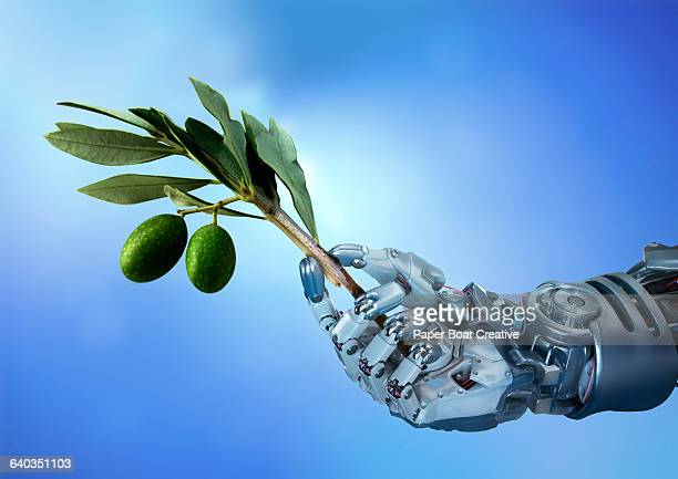 Robot hand holding a single olive branch