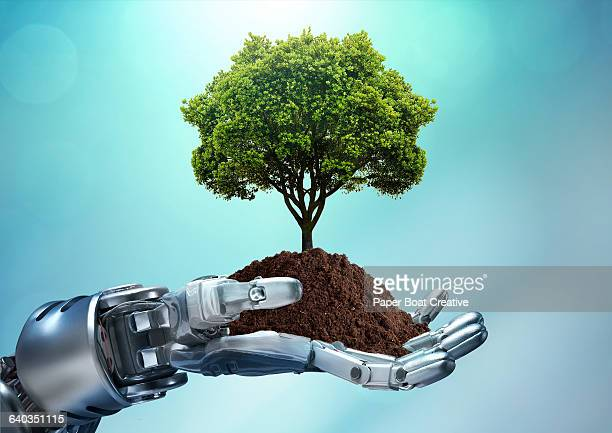 Robot hand holding a tree grounded with soil