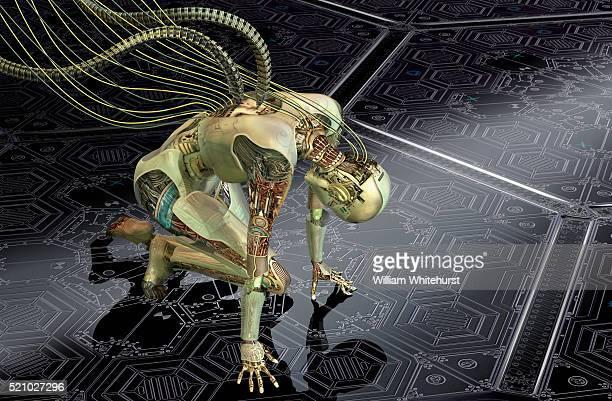 Robot Recharging Batteries