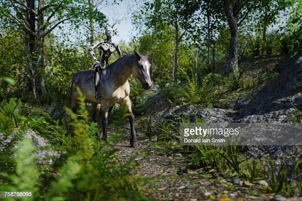 Robot riding horse in the woods