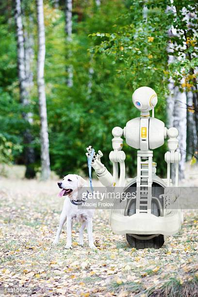 Robot walking with dog in the woods