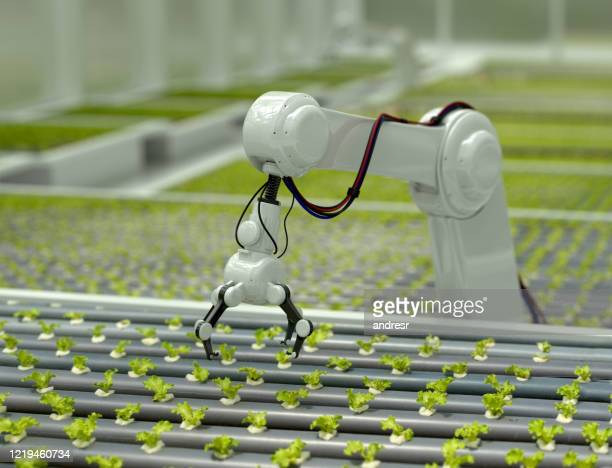 3d robotic arm harvesting lettuce - robot stock pictures, royalty-free photos & images