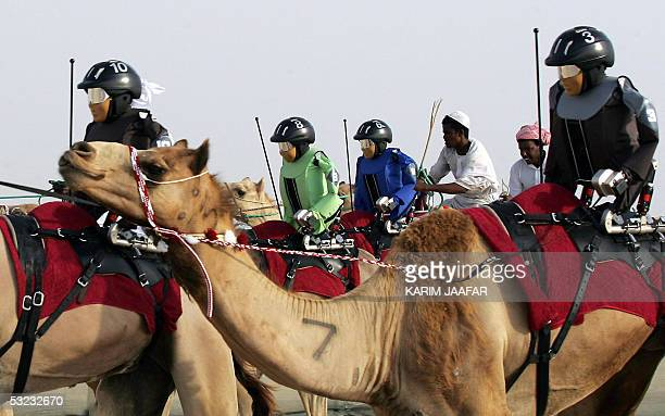 Robotic camel jockeys designed by an unidentified Swiss company are in action during this first camel race in which seven Robots were tested 13 July...