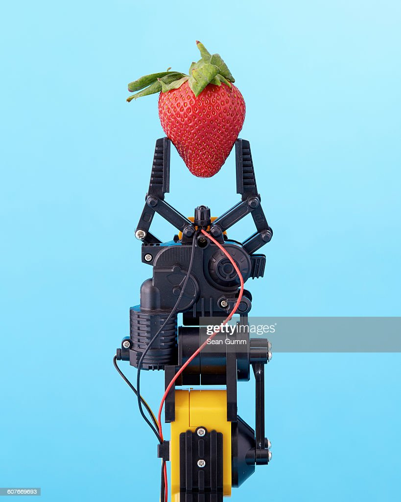 Robotic claw holding strawberry : Photo