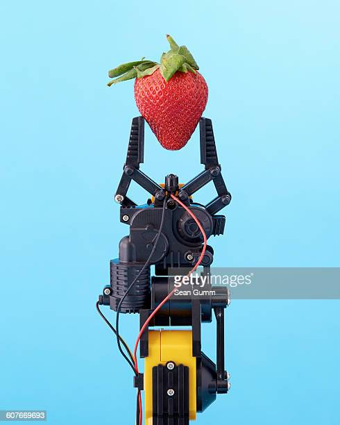 robotic claw holding strawberry - robô - fotografias e filmes do acervo