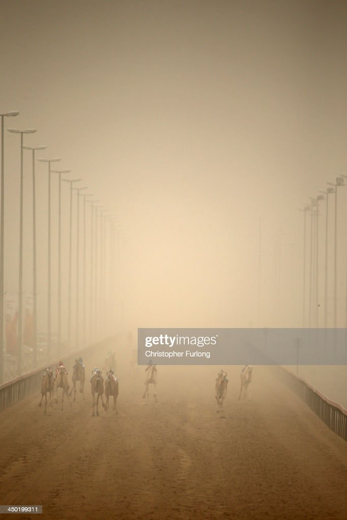 Robotic jockeys race camels through a sandstorm at Dubai Camel Racing Club during the Al Marmoum camel racing season on November 17, 2013 in Dubai, United Arab Emirates. Camel racing is one of the oldest sports in the Middle East. Historically children from India were used as jockeys on the camels until it was outlawed in 2002. Today robot jockeys are used and include shock absorbers and GPS tracking systems. The camel's owners control the robot's whips from their speeding four wheel drives at the side of the track. Throroughbred racing camels can be as valuable as one million US dollars.