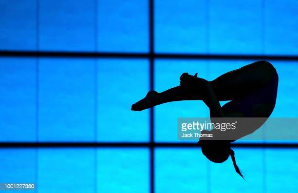 Divers practice during British Diving Media Access on July 18 2018 in London England