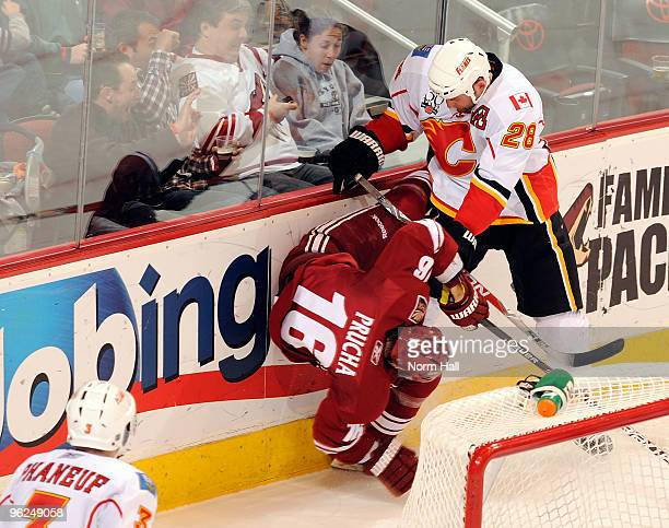 Robyn Regehr of the Calgary Flames checks Petr Prucha of the Phoenix Coyotes on January 28 2010 at Jobingcom Arena in Glendale Arizona