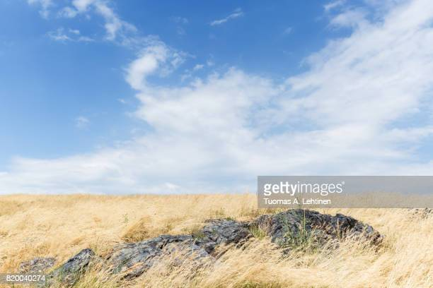 Rock and hays on a sunny and windy day at a meadow in Czech Republic. Copy space.