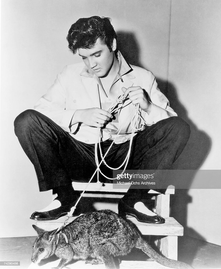 Rock and roll singer Elvis Presley poses for a portrait with a kangaroo to publicize his film 'Jailhouse Rock' in 1957.