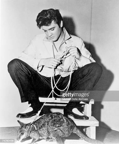 Rock and roll singer Elvis Presley poses for a portrait with a kangaroo to publicize his film 'Jailhouse Rock' in 1957