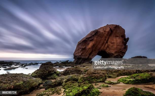 rock and sea - palazzo reale foto e immagini stock