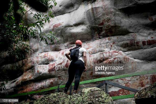 Rock art is seen at el Raudal del guayabero in Guaviare, Colombia, on March 25, 2021. Rock paintings made in South America around 8,000 - 12,000...