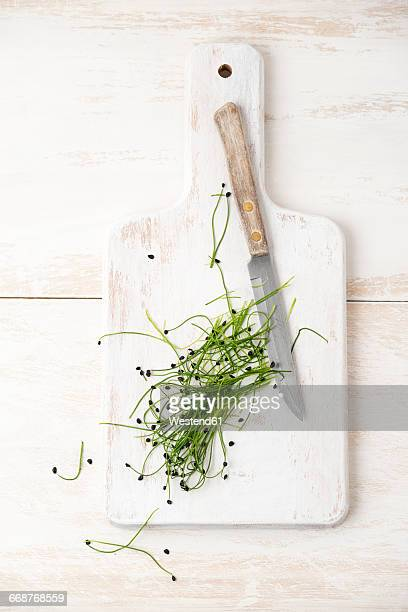 Rock Chives and knive on chopping board
