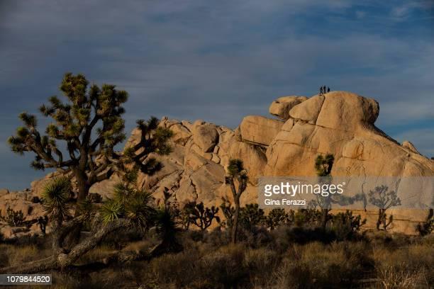 Rock climbers enjoy the scenery at Joshua Tree National Park on January 8, 2019 in Joshua Tree, California. The park may temporarily close on...