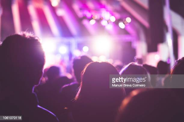 rock concert - groupie stock pictures, royalty-free photos & images