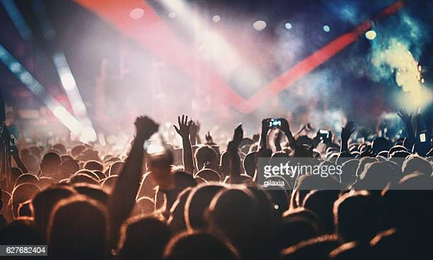 rock concert. - crowd stock pictures, royalty-free photos & images