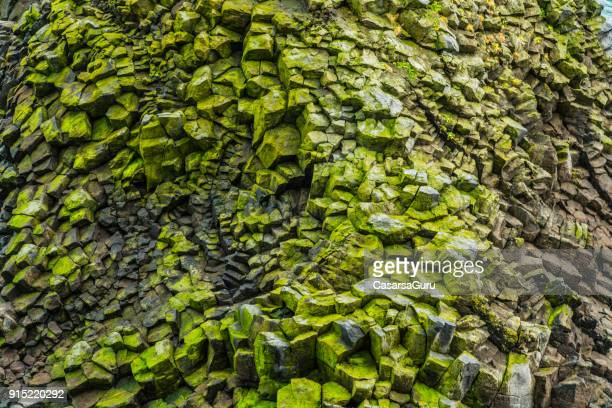 rock covered with moss - geology stock pictures, royalty-free photos & images