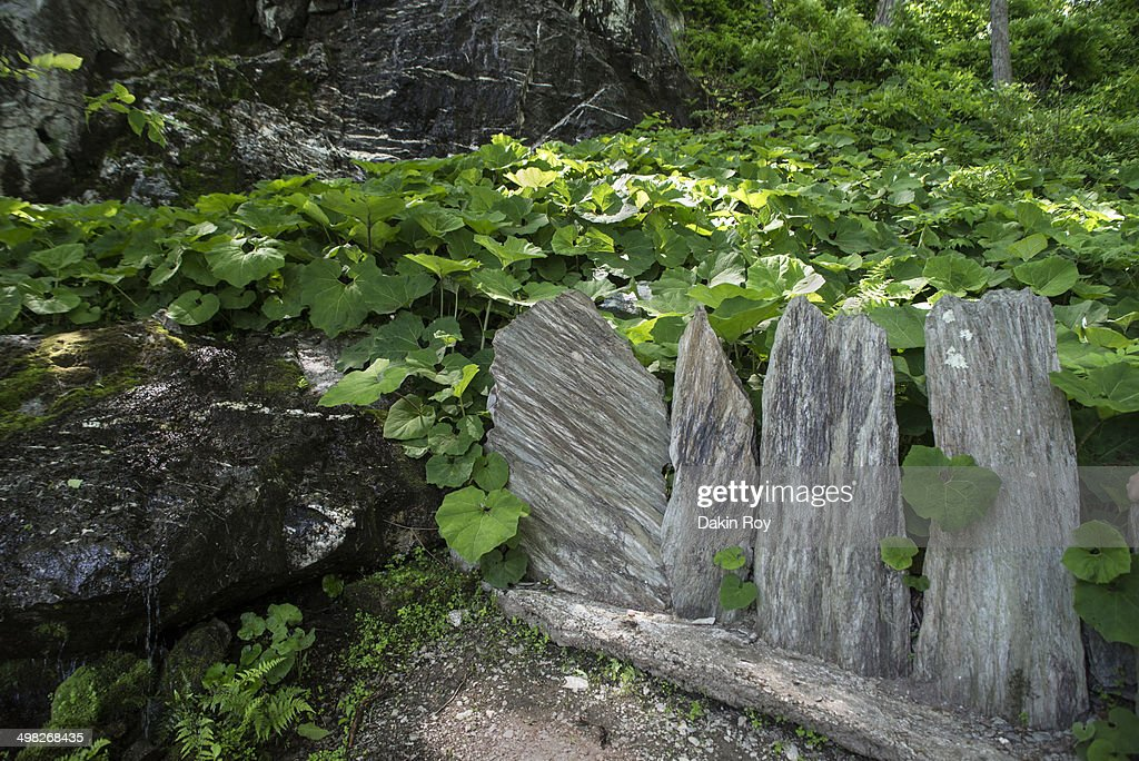 Rock Feature Innisfree Garden In Millbrook Ny Stock Photo | Getty Images
