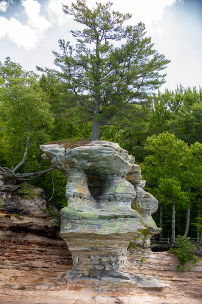 Rock formation against forest,United States,USA