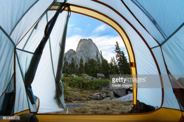 rock formation and trees seen through tent at dusk - grand teton national park stock pictures, royalty-free photos & images