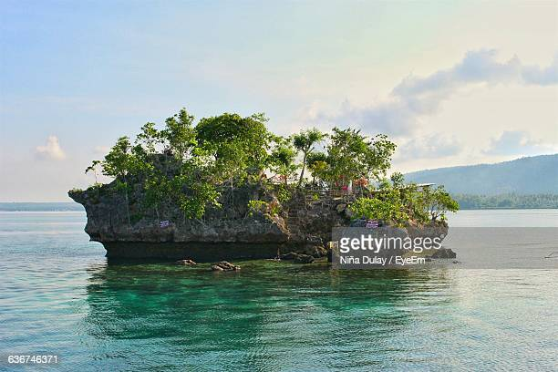 rock formation at wishing island against sky - davao city stock photos and pictures