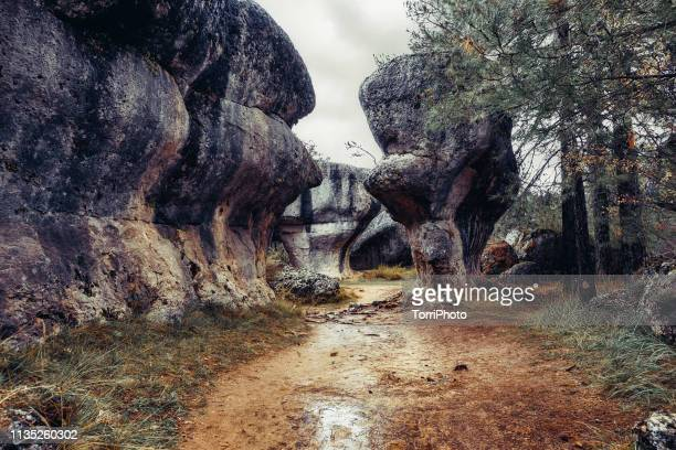 rock formation in ciudad encantada, spain - unesco stockfoto's en -beelden