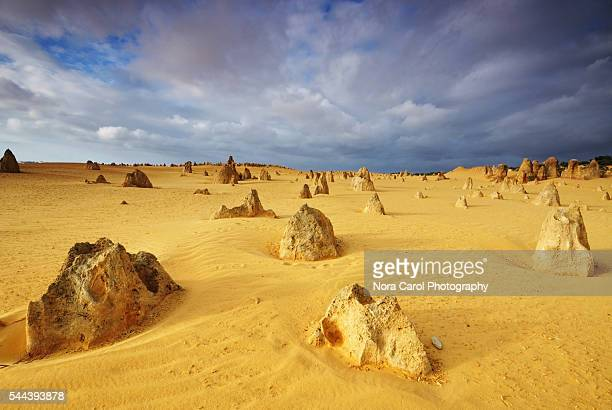 Rock formation in the Pinnacles Desert Western Australia