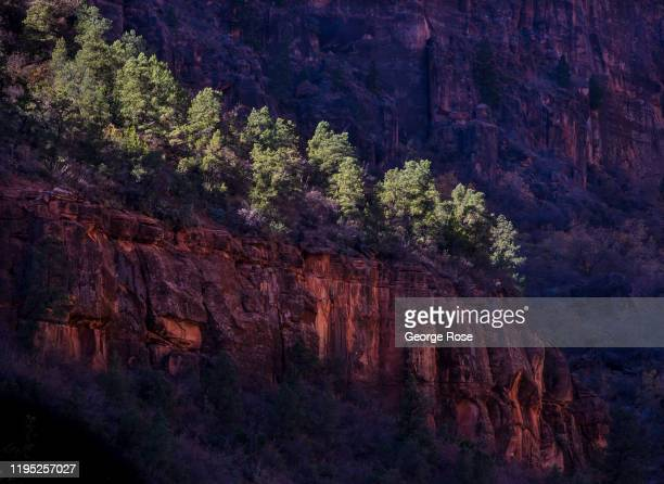Rock formations along the Virgin River are viewed on November 9, 2019 in Zion National Park, Utah. Zion National Park, located 3 hours north of Las...