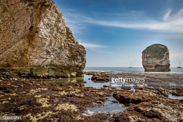 rock formations at freshwater bay on the isle of wight, at low tide - freshwater bay isle of wight stock pictures, royalty-free photos & images