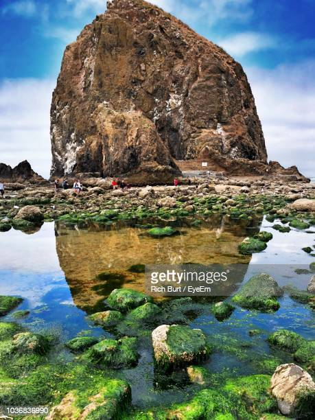 rock formations by sea against sky - oregon coast stock pictures, royalty-free photos & images