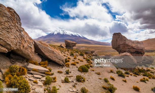 rock formations near laguna turquiri. altiplano, bolivia - altiplano stock pictures, royalty-free photos & images