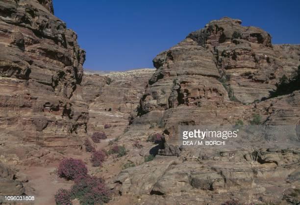Rock formations near the Monastery the ancient city of Petra Jordan