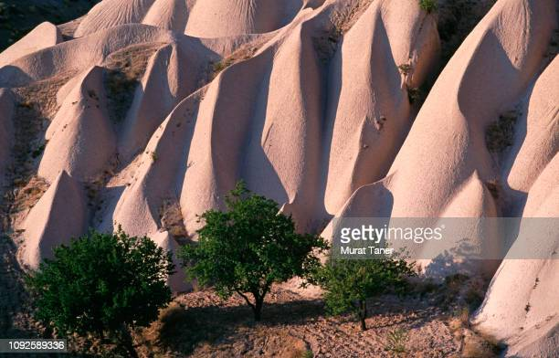 rock formations of cappadocia - anatolia stock pictures, royalty-free photos & images
