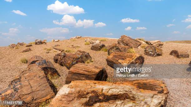rock formations on landscape against sky - petrified log stock pictures, royalty-free photos & images