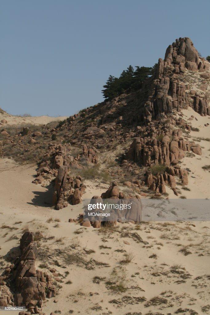 Rock on the Gobi Desert : Stock Photo