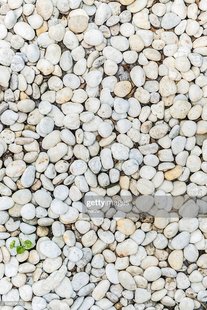 Rock : Stock Photo