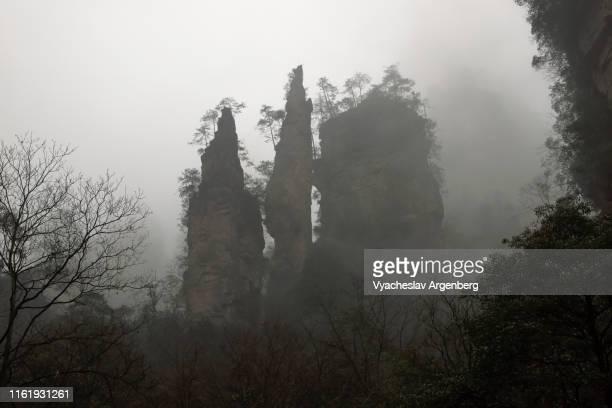 rock pillars in fog, zhangjiajie otherworldly views, hunan, china - pandora peaks stock photos and pictures