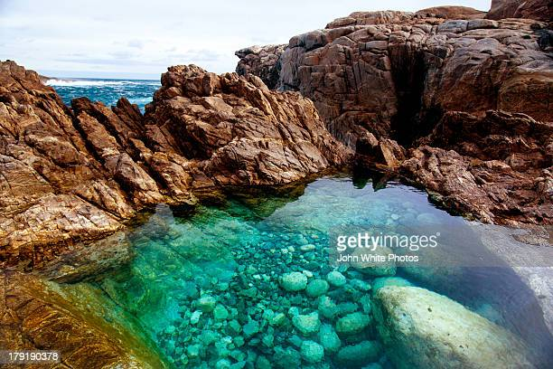 Rock pool. Cape Carnot. South Australia.