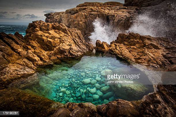 rock pool with clear seawater - tidvattensbassäng bildbanksfoton och bilder