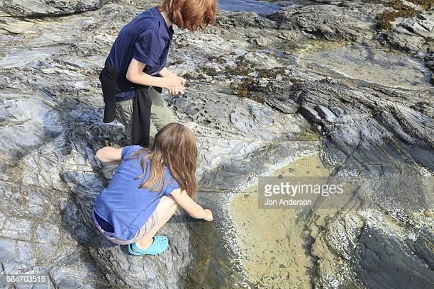 rock pooling - tidvattensbassäng bildbanksfoton och bilder